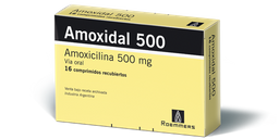 Amoxidal 500 Mg