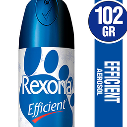 Efficient Aerosol Para Pies 102 Ml
