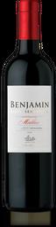 Vino Benjamín Nieto 750 ml