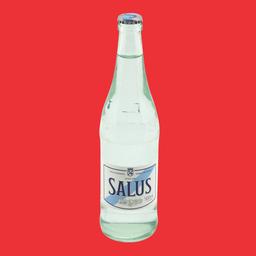Agua Salus con Gas - 500 ml