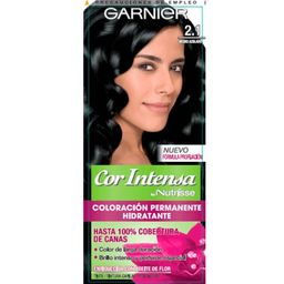Garnier Nutrisse Cor Intense N.2.1