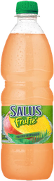 Refrescos Línea Salus Frutté - 600 ml