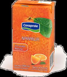 Jugos Conaprole - 250 ml