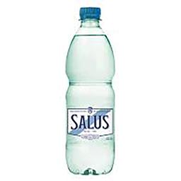 Salus con Gas 500 ml
