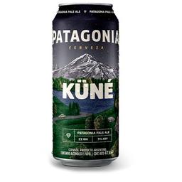 Patagonia Pale Ale 473 ml