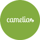 Camelia background