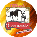 Rocinante background